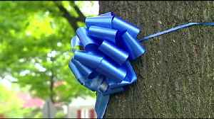 VIDEO: Boy Scouts hang 'ribbons of respect' in honor of police officers [Video]