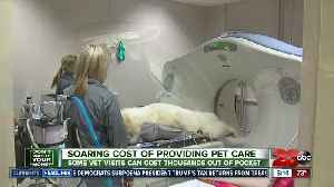 DWYM: A look at pet care costs, pet insurance [Video]