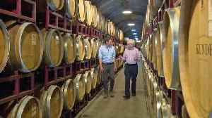 Bay Area Wine Producers Fear Effect of Increased China Tariffs [Video]