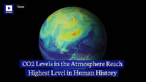 CO2 Levels in the Atmosphere Reach Highest Level in Human History [Video]