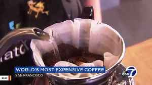 A San Francisco Shop Is Offering World's Most Expensive Coffee At $75 [Video]