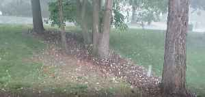 Large Hail Pelts Cary Amid Thunderstorms in North Carolina [Video]