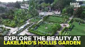 Explore the beauty at Hollis Garden in Lakeland | Taste and See Tampa Bay [Video]