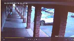 ONLY ON 2: Surveillance video shows gunman shooting man outside CiCi's restaurant [Video]