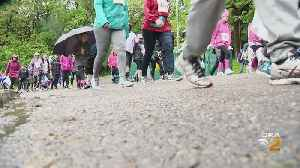 Thousands Flooded Schenley Park For Race For The Cure [Video]