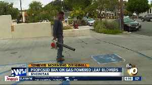 Encinitas proposes ban on gas-powered leaf blowers [Video]