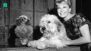 Actress Doris Day Dies At 97 [Video]