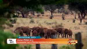 Take Action To Protect Animals, People & Our Home [Video]