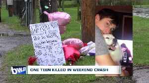 Teen killed in weekend roll-over crash [Video]