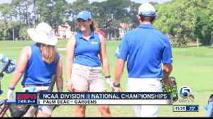 Lynn Golf NCAA Division Two Tournament [Video]
