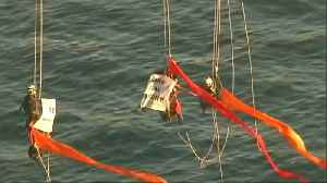 Greenpeace activists climb Sydney Harbour Bridge in climate protest [Video]