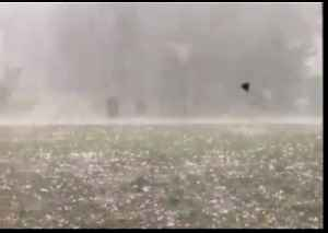 Residents Shelter From Hail and Strong Winds in Raleigh, North Carolina [Video]