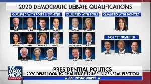 The 2020 candidates working to qualify for Democratic presidential debate [Video]