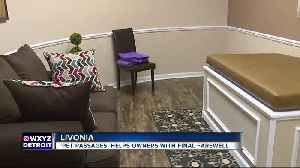 New funeral home for pets offers cremation, visitation for family, friends [Video]