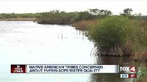 Native American tribes express concern over quality of water flowing into the Everglades [Video]