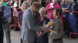 Prince Harry Visits Oxford Children's Hospital [Video]