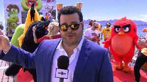 'The Angry Birds Movie 2': Featurette - Cannes 2019 Photo Call Sizzle [Video]