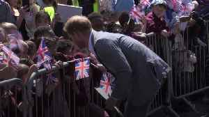 New dad Harry charms young fans in Oxford [Video]