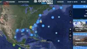 News video: Great White Sharks Have Been Spotted Off The Coasts of Georgia, Florida and the Carolinas