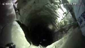 'Hee-haul him out!' Firefighters rescue 350kg donkey trapped in well [Video]