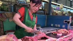 China is killing 1/3 of its pigs because of a gruesome and incurable fever [Video]