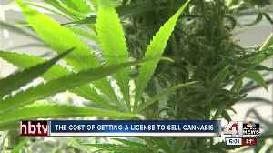 MO businesses waiting to apply for medical marijuana license [Video]