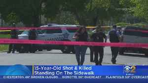 News video: Boy Dead, Woman Wounded In South Side Shooting