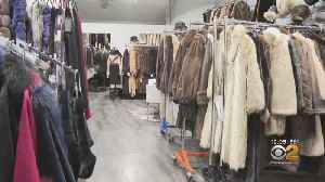 Push For NYC Fur Sale Ban Has Business Owners Dander Up [Video]