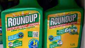 Weed-Killing Chemical Roundup Found In Cheerios And Quaker Oats Products [Video]