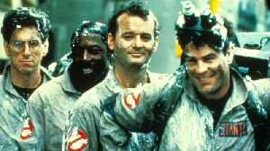 Bill Murray Admits He Would Appear In Jason Reitman's 'Ghostbusters' Movie [Video]