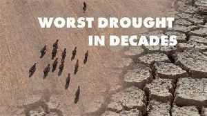 Severe droughts are affecting Angola and North Korea [Video]