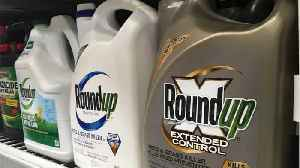 Weed-Killer Roundup May Be Linked To Fatty Liver Disease In Humans [Video]