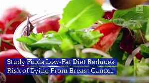 Study Finds Low-Fat Diet Reduces Risk of Dying From Breast Cancer [Video]