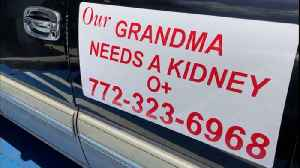 Grandmother hopes to find kidney donor through magnetic car signs [Video]