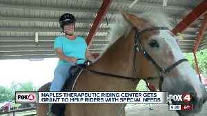 Therapeutic horse riding center receives $15,000 grant [Video]