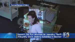 Radnor Police Search For Woman Wanted In Jewelry Theft [Video]