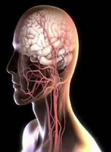 Stroke Rates Down More Than 50 Percent For Adults Over 55 [Video]