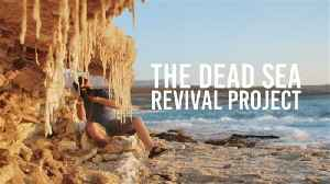 How one man is keeping the Dead Sea alive [Video]