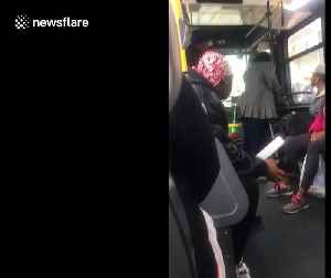 New York woman relentlessly argues with bus driver after refusing to pay the fare [Video]