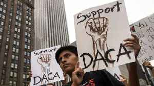 Another Appeals Court Rules DACA Rollback Was Unlawful [Video]