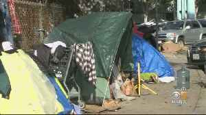 Homeless Population Surges Across Bay Area [Video]