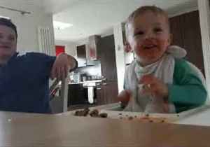 Bilingual Toddler Learns How to Moo in Welsh and Irish Accents [Video]