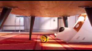Patton Oswalt In 'The Secret Life Of Pets 2' New Trailer [Video]