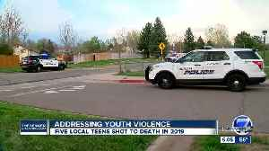 Community members look for answers after recent uptick of youth violence [Video]