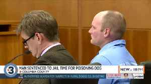 Poynette man sentenced for poisoning a dog, can avoid jail time by donating $111,600 to local orgs [Video]