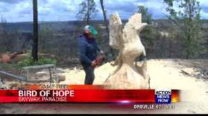 Phoenix carving becomes stop for those leaving Paradise [Video]