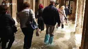 Tourists forced to wade as unusually high tide floods Venice [Video]