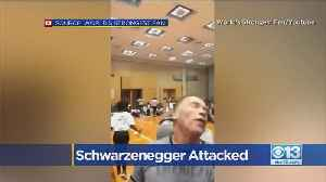 Arnold Schwarzenegger got kicked in the back while he was in South Africa [Video]