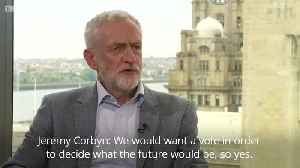 Jeremy Corbyn and Vince Cable on the option of a second Brexit Referendum [Video]