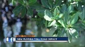 Governor DeSantis signs Toll Road bill; environmentalists argue impact on wildlife [Video]